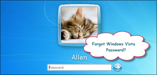Reset Windows Vista password